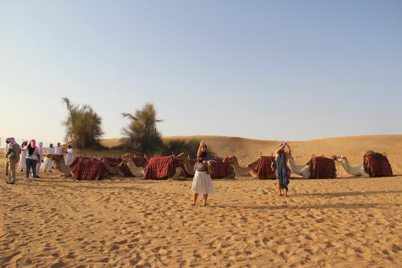 Camelos Platinum Heritage Dubai