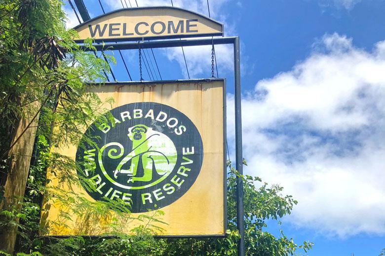 Bem-vindo ao Barbados Wildlife Reserve!
