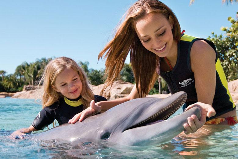 O nado com os golfinhos deixa as crianças encantadas no Discovery Cove.