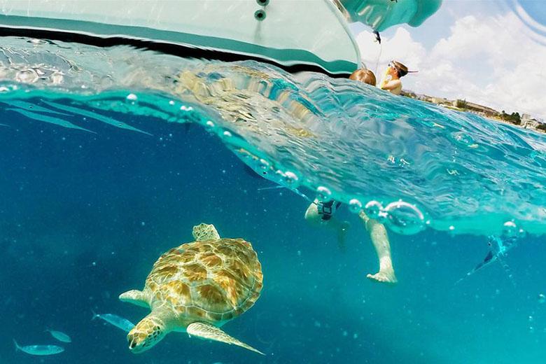 Se você gosta de mergulhar vai curtir muito Barbados.