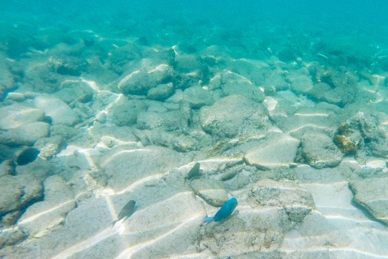 Como o mar é bem calmo, a flutuação fica bem fácil.