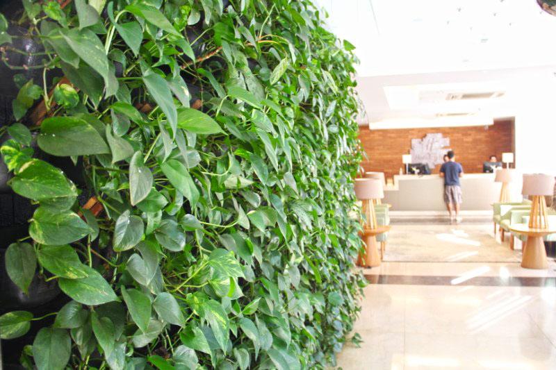 A bonita parede de plantas com a recepção do fundo.