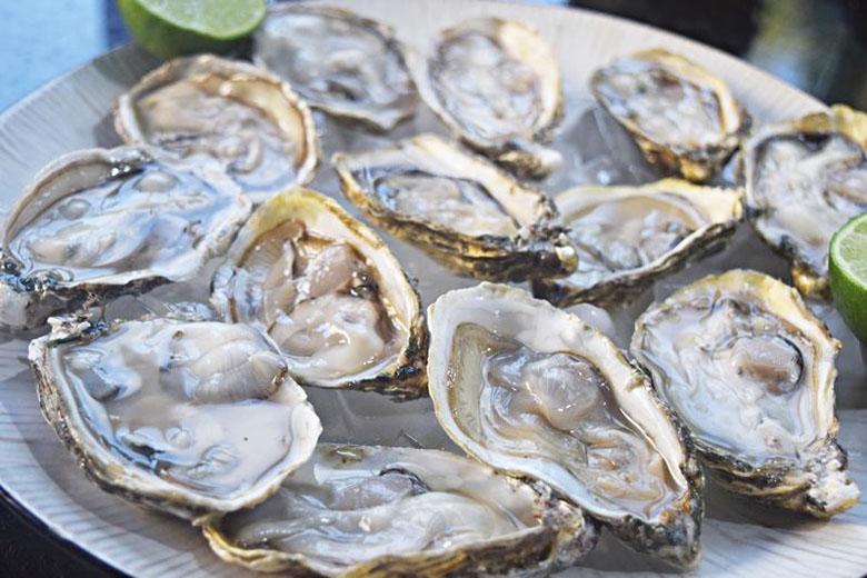 Nada menos que as melhores ostras do mundo.