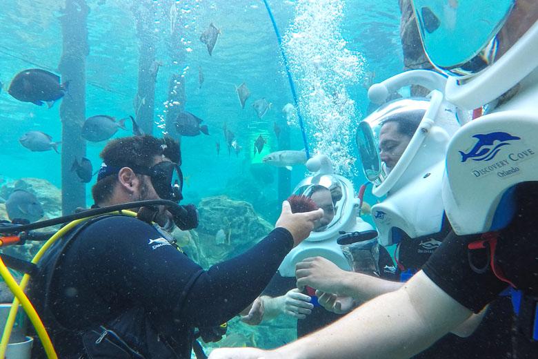 Segunda parada: um dos guias apresenta uma espécie marinha aos visitantes.
