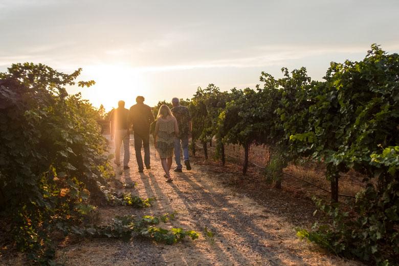 Tour por vinícolas na Califórnia.