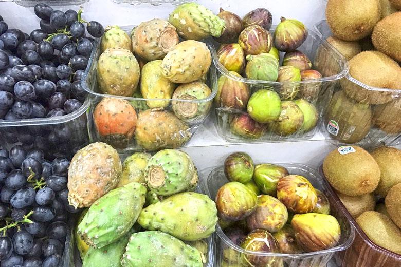 Figos-da-índia