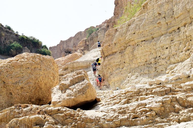 Trilha de Wadi David.