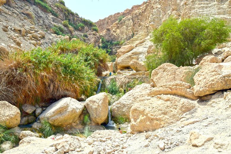 Chegando à cachoeira David's Waterfall.
